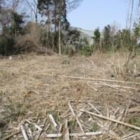耕作放棄地からバラ園へ 1017.3.20