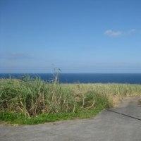 沖縄です!