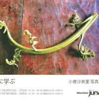 小倉沙保里写真展 Rongに学ぶ 大阪ニコンサロン