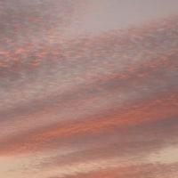 早朝の飛行雲 2016 12-4