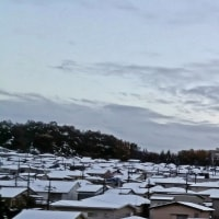 ううぅ、おお寒い、雪だ