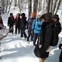 2月22日(水)はじめての自然散歩~西岡公園~の様子