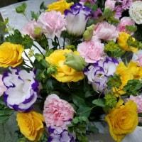 6月26日 明日の誕生花・ゆかりの花 花言葉は?(*^O^*)☆