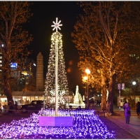 SAPPORO WHITE ILLUMINATION・・・no.2。