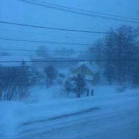 いつまで続くか、猛吹雪……