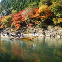 大自然の峡谷美。保津峡の紅葉が色づきました!