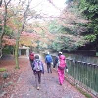 三井寺から琵琶湖疏水
