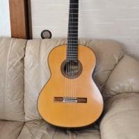 私のギター