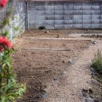 今年の庭はどうしようか