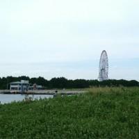 葛西臨海公園でピクニック