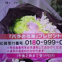 10/24・・・めざましテレビお花プレゼント