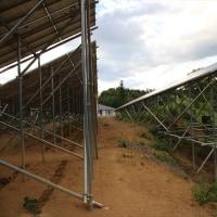 パナックス 第一発電所 除草剤散布効果