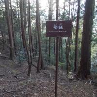 近江(滋賀)探訪 近江・布施山城(東近江市)探索 (11/25)