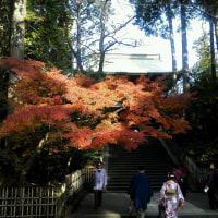 「円覚寺」の紅葉