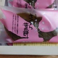 銘菓「さくら葉餅」 河津桜見物のおともに