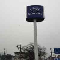 雪、降っています