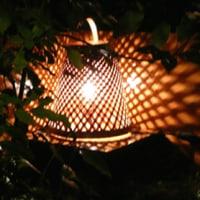 「秋の愉しみ方(8)」