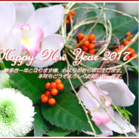 * A Happy New Year 2017 *