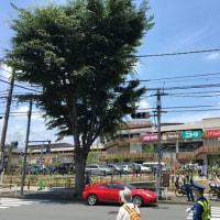 6月22日オープンのイーアス高尾を訪れる 2017.6.24