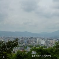 祇園界隈~八坂神社~坂本竜馬の墓 2015・6・22