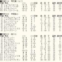 「菊花賞」未掲載4頭のカバラ暗示とWIN5対象レースのカバラ暗示付き出馬表