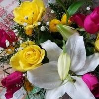 12月3日 明日の誕生花・ゆかりの花 花言葉は?(*^O^*)☆