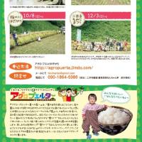 うちの田んぼでお米作るよー「こめっこくらぶ2017」参加者募集〜!