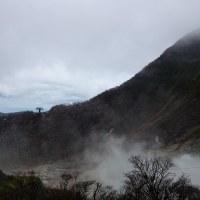 はとバス:大涌谷から富士山二合目まで