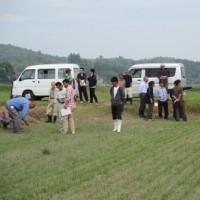 水稲の乾田直播現地検討会が開催されました