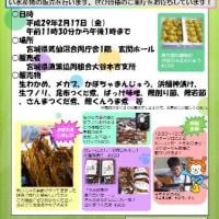 【本日開催!】気仙沼合同庁舎水産物直売会が開催されます