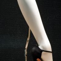 御み脚 La jambe du mannequin