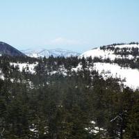 【自然情報】 5/19「八幡平山頂」