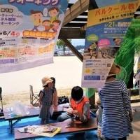 H29年度「糸島くるくるマーケット・連携事業(春)」無事、終了!