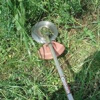 修理した草刈機を使用