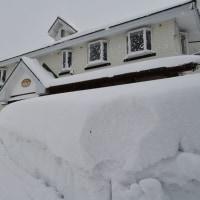 大雪で家が埋まっています。