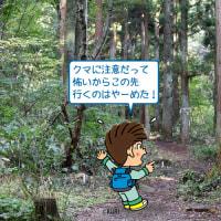 写太くんのカメラ片手にパチさんぽ(#63 ハイキングに来たけど…)