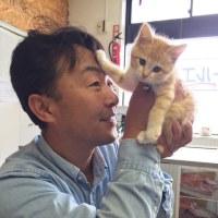 ドッカーンときたぜ‼️北海道‼️ トータルカーズワークスブログ