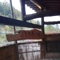 新穂高温泉♨国宝松本城🏯紅葉🍁巡り