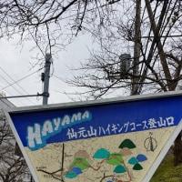 2016年11月6日(日) 葉山プチトレ