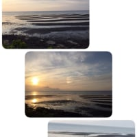 海を見に行きました