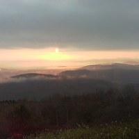 柔らかい日の出、霧の発生僅か