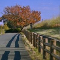 二子玉川😄   松村