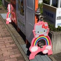 キティーちゃん発見!