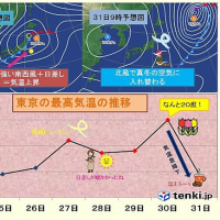 東京 30日の気温 20℃ ?!