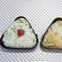 「とんこ」炒めのお弁当
