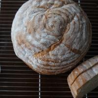 新しい食材 キヌアで作るパン