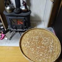 乾燥しょうが作り