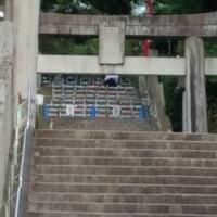 宮地嶽神社光の道(福岡県福津市)