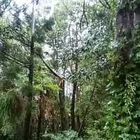 台風が直撃、房総半島縦断、