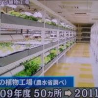 植物工場の技術の進化